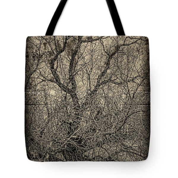 Tickle Of Branches  Tote Bag by Jerry Cordeiro