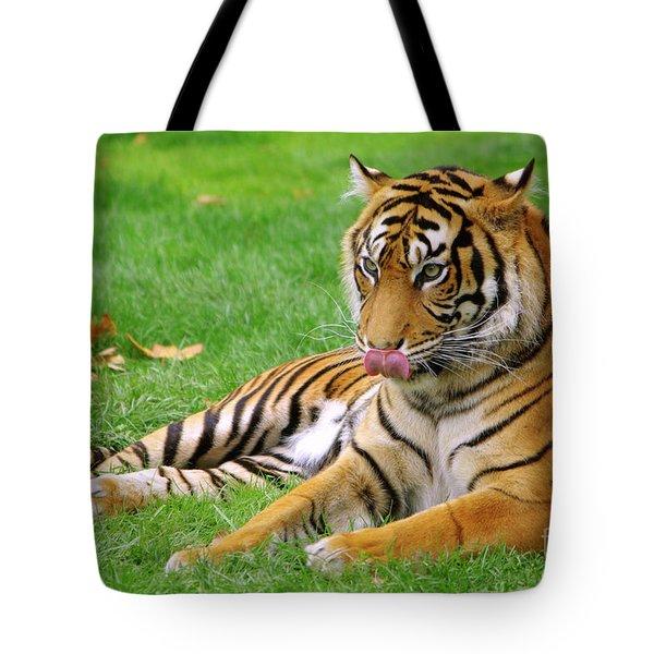 Tiger Tote Bag by Carlos Caetano