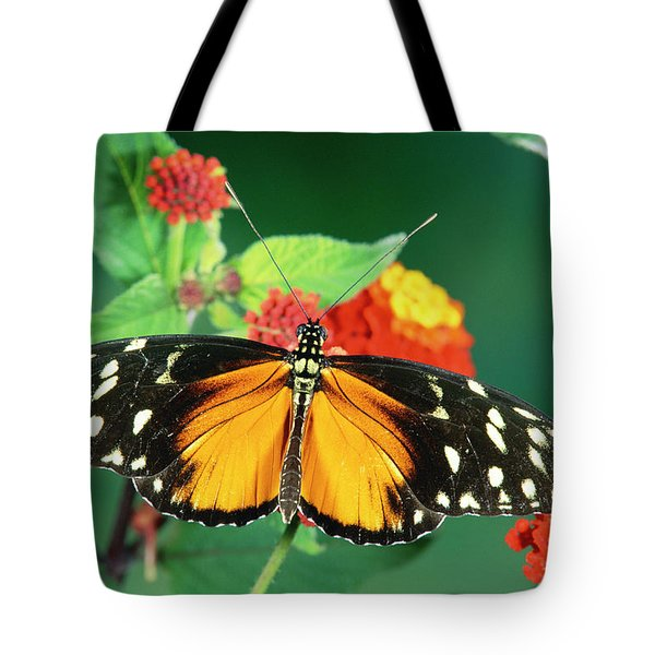 Tiger Longwing Heliconius Hecale Tote Bag by Michael & Patricia Fogden