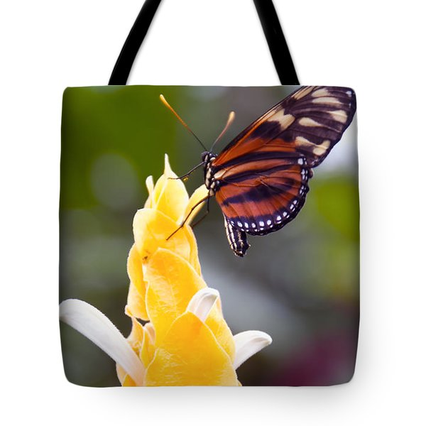 Tiger Longwing Tote Bag