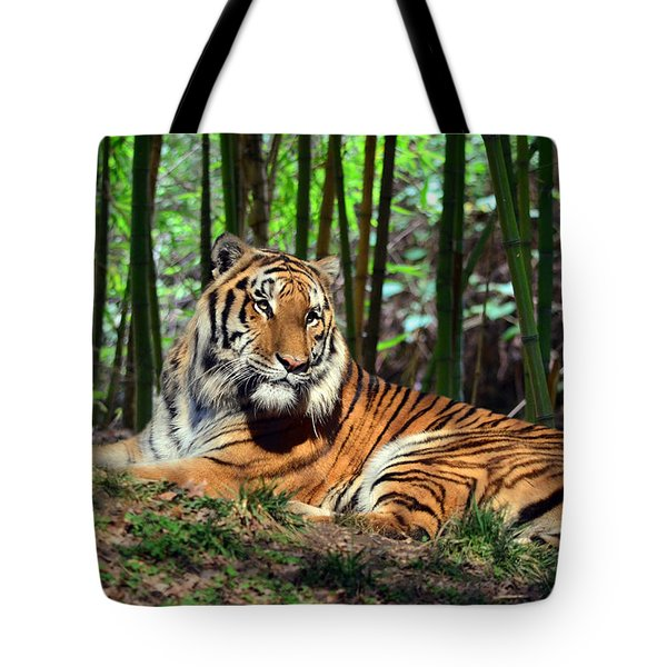 Tiger Rest And Bamboo Tote Bag by Sandi OReilly