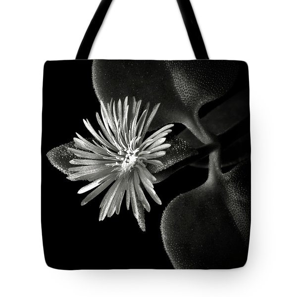 Tiny Ice Plant In Black And White Tote Bag