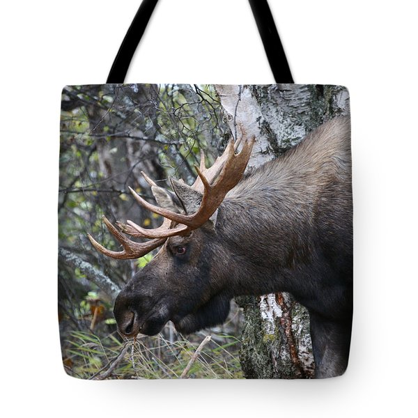 Tote Bag featuring the photograph Tired Eyes by Doug Lloyd