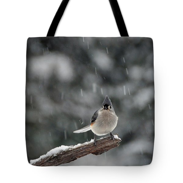 Titmouse Endures Snowstorm Tote Bag by Mike Martin