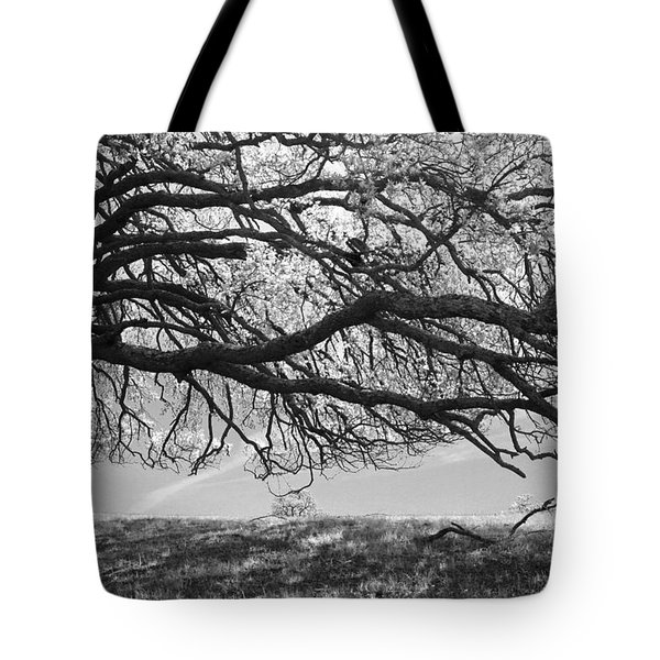 To Lie Here With You Would Be Heaven Tote Bag by Laurie Search