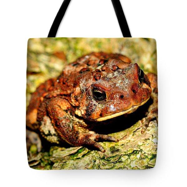 Tote Bag featuring the photograph Toad by Joe  Ng