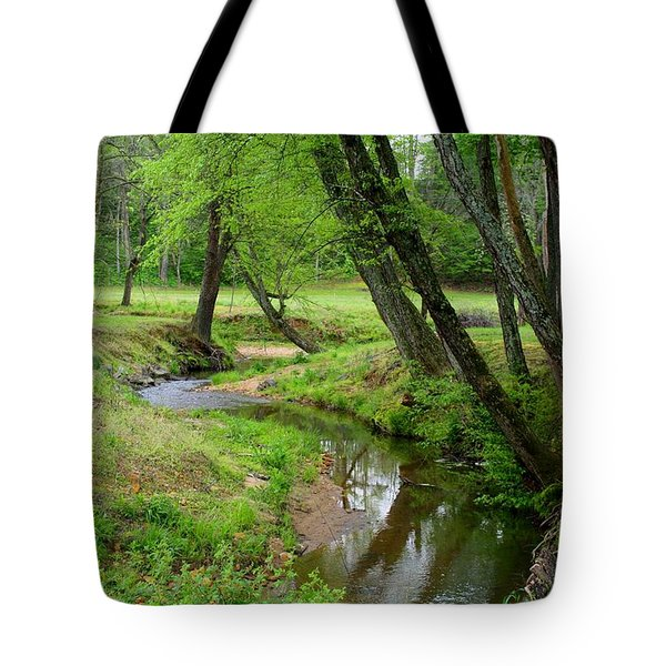 Tote Bag featuring the photograph Toms Creek In Early Spring by Kathryn Meyer