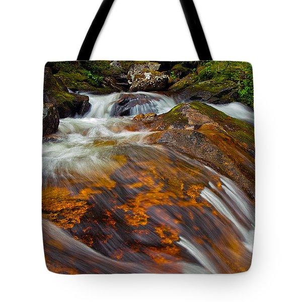 Tonahutu Creek Tote Bag by Brian Kerls