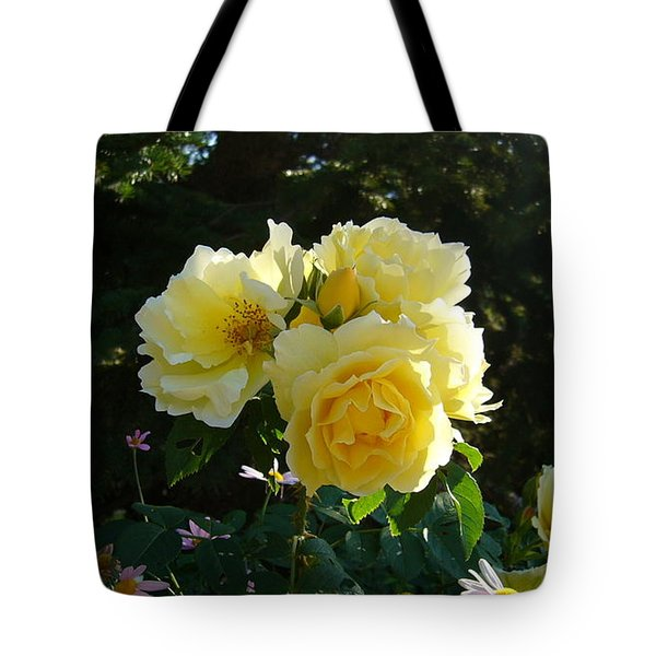 Tote Bag featuring the photograph Topaz Jewel by Jim Sauchyn