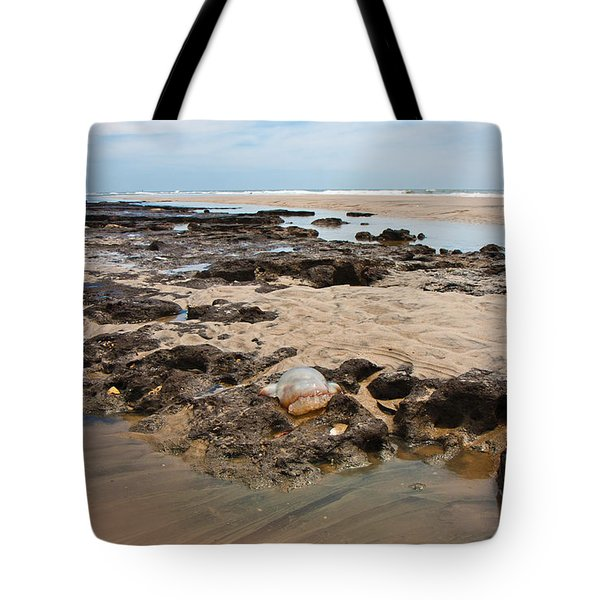 Topsail Sponge-land Tote Bag by Betsy Knapp