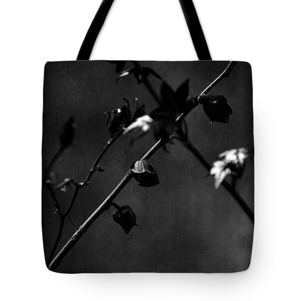 Trances And Dreams Tote Bag by Rebecca Sherman