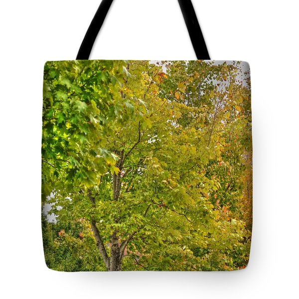 Tote Bag featuring the photograph Transition Of Autumn Color by Michael Frank Jr