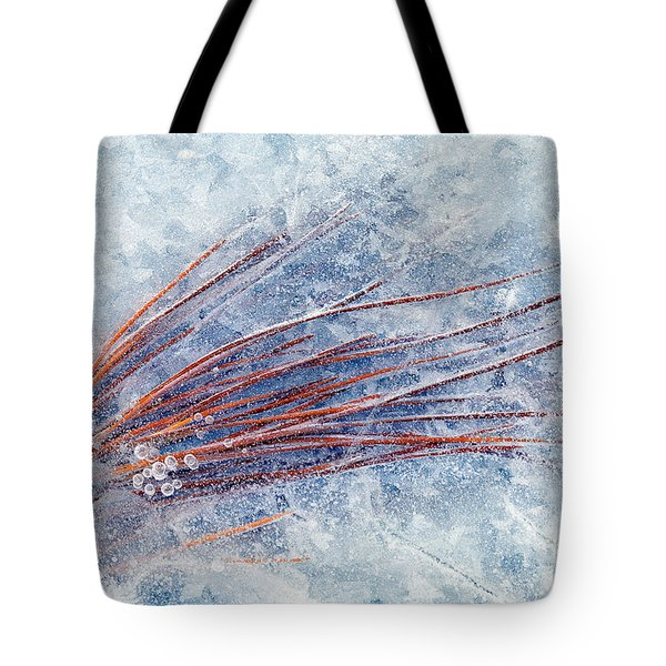 Trapped In Winter Tote Bag by Mike  Dawson
