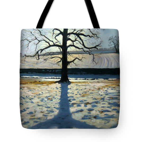 Tree And Shadow Calke Abbey Derbyshire Tote Bag