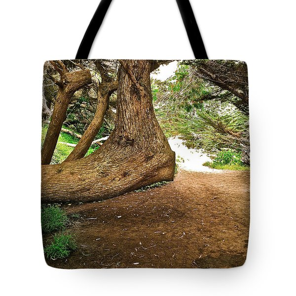 Tote Bag featuring the photograph Tree And Trail by Bill Owen
