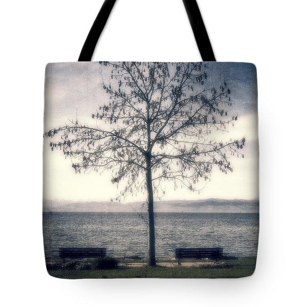tree at lake Constance Tote Bag by Joana Kruse