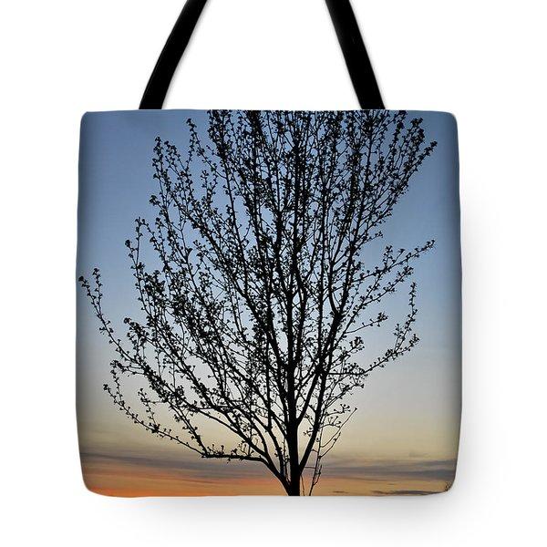 Tree At Sunset Tote Bag