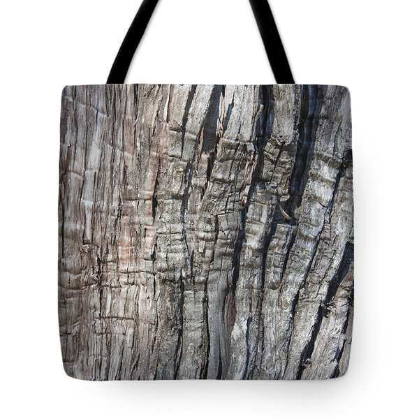 Tree Bark No. 1 Stress Lines Tote Bag by Lynn Palmer