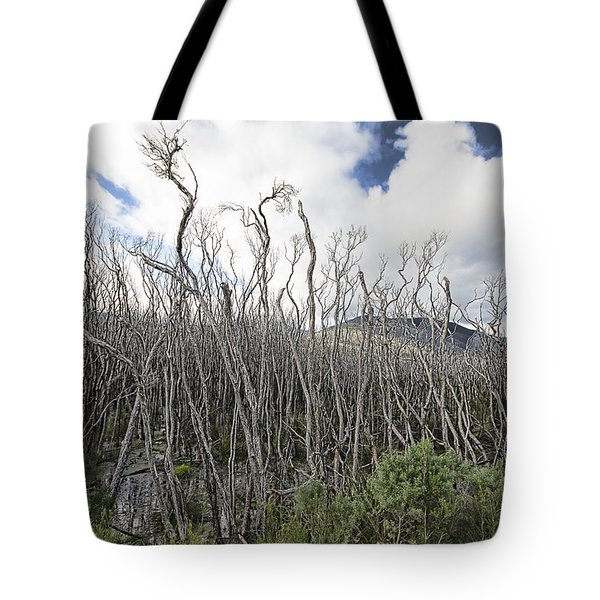 Tree Cemetery Tote Bag
