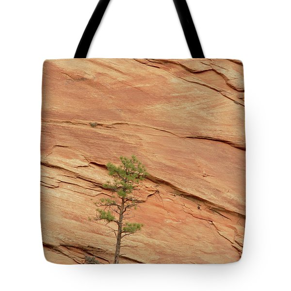 Tree Clinging To Sandstone Formation Tote Bag by Gerry Ellis