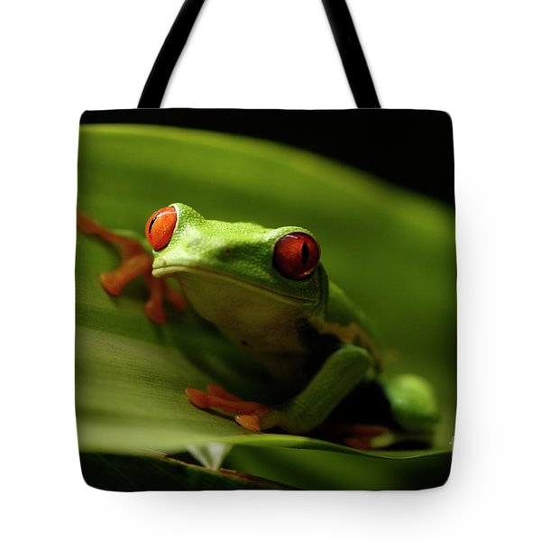 Tree Frog 10 Tote Bag by Bob Christopher