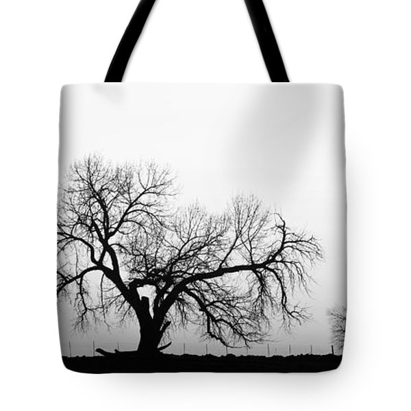 Tree Harmony Black And White Tote Bag by James BO  Insogna