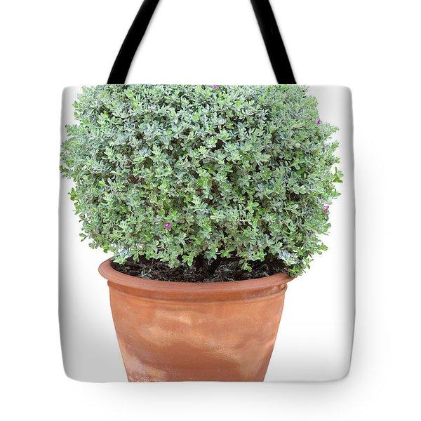 Tree In Flowerpot Tote Bag