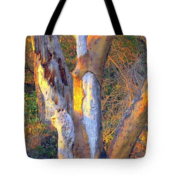 Tree In The Sunset Tote Bag by Randall Thomas Stone