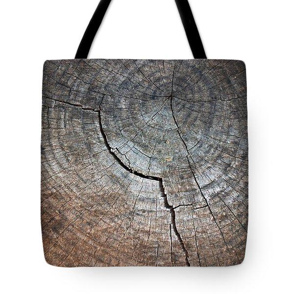 Tree Trunk Tote Bag by Carlos Caetano