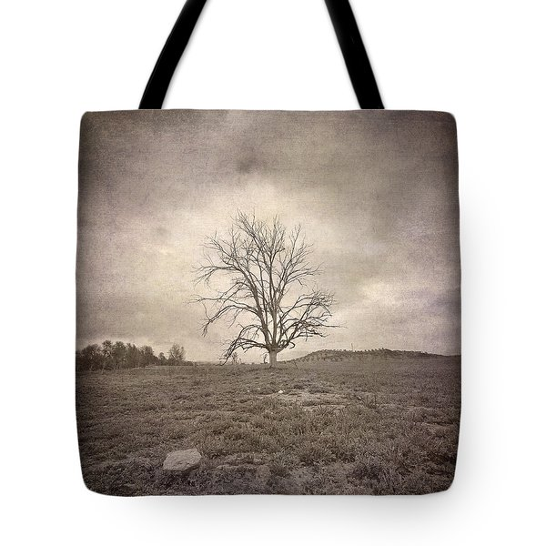 Tree Under The Rain Tote Bag by Guido Montanes Castillo