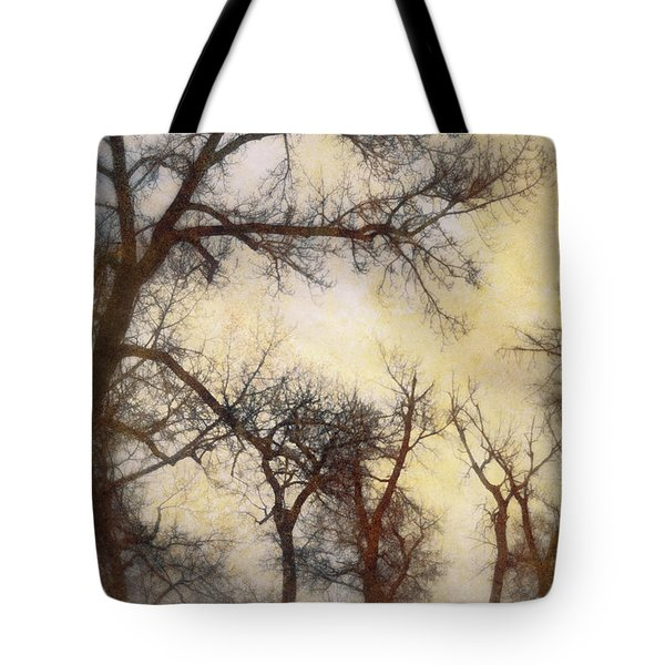 Trees  Tote Bag by Diane Dugas