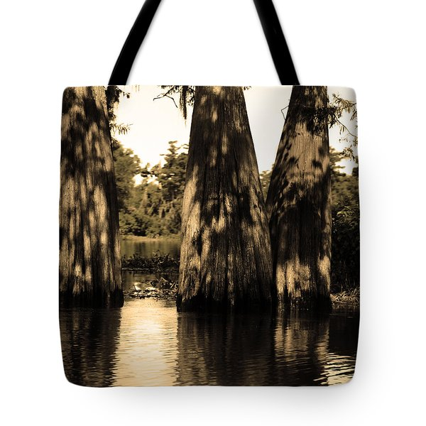 Trees In The Basin Tote Bag
