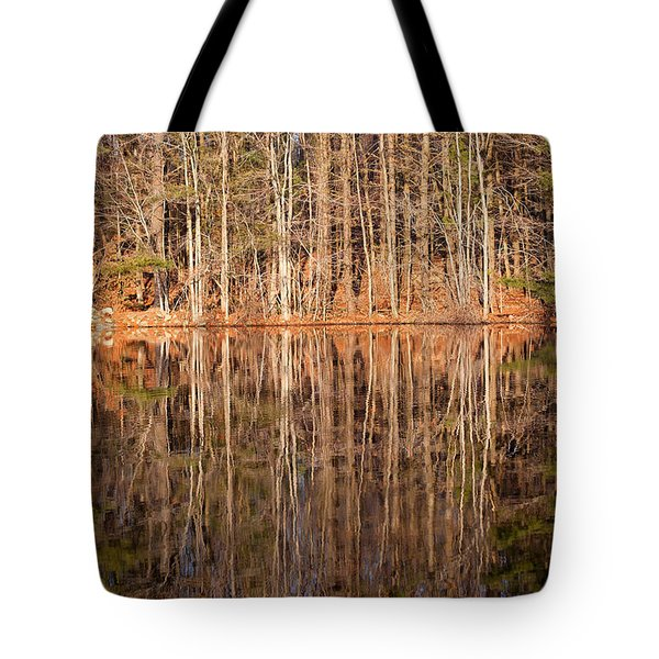 Trees In The Comfort Of Trees Tote Bag by Karol Livote