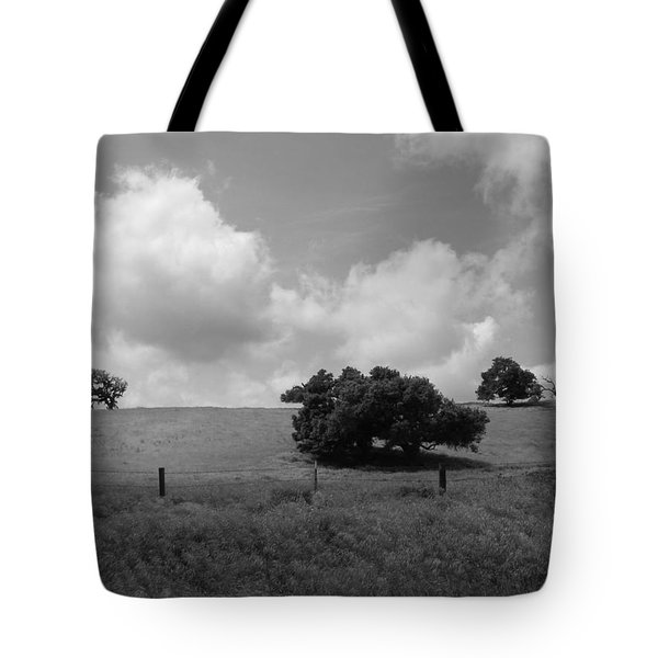 Tote Bag featuring the photograph Trees On The Hillrise by Kathleen Grace