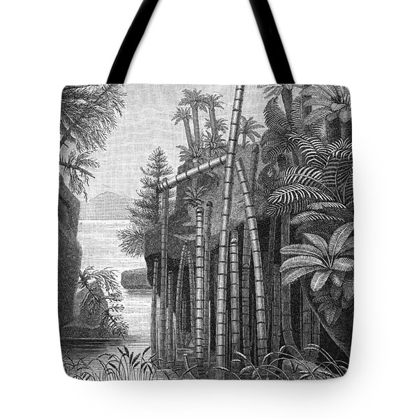 Triassic Period Tote Bag by Science Source
