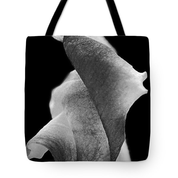 Tote Bag featuring the photograph Tribute by Lauren Radke