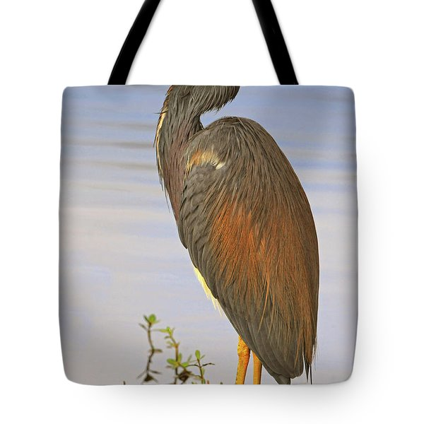 Tricolor Heron Tote Bag by Dave Mills