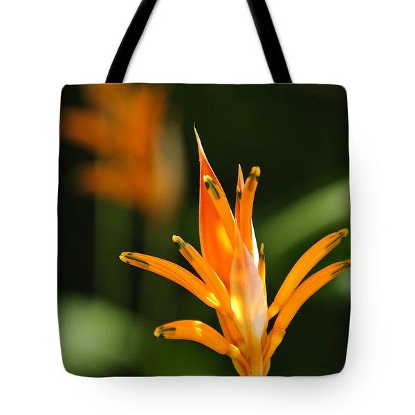 Tropical Orange Heliconia Flower Tote Bag by Elena Elisseeva