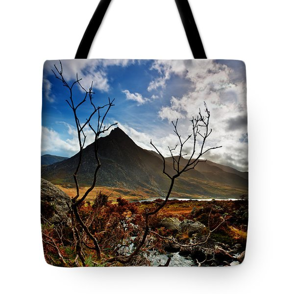 Tote Bag featuring the photograph Tryfan And Tree by Beverly Cash