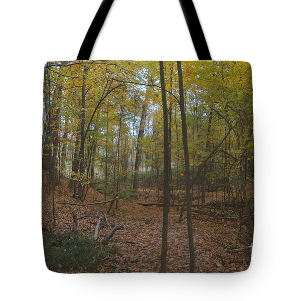 Tote Bag featuring the photograph Tryon Park by William Norton