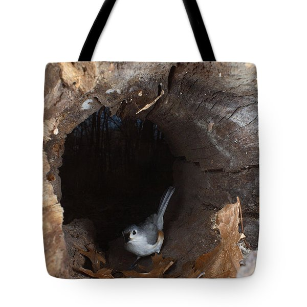Tufted Titmouse In A Log Tote Bag by Ted Kinsman
