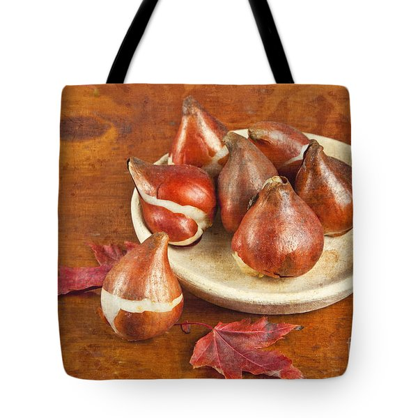Tote Bag featuring the photograph Tulip Bulbs Brocade by Verena Matthew