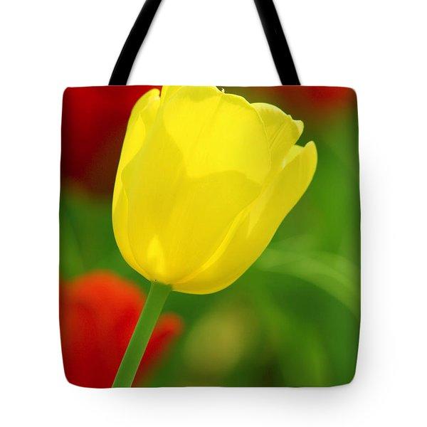 Tulipan Amarillo Tote Bag