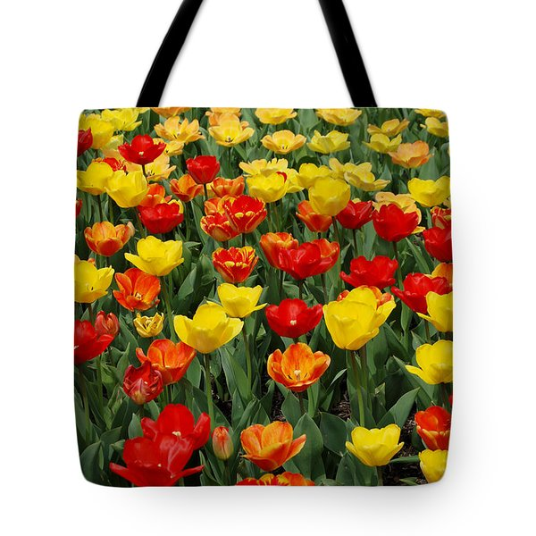 Tote Bag featuring the photograph Tulips by Eva Kaufman