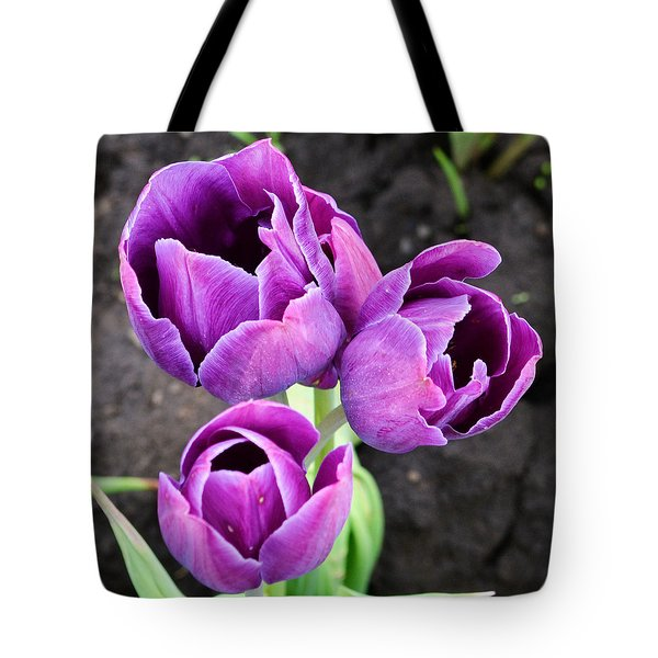 Tulips Queen Of The Night Tote Bag