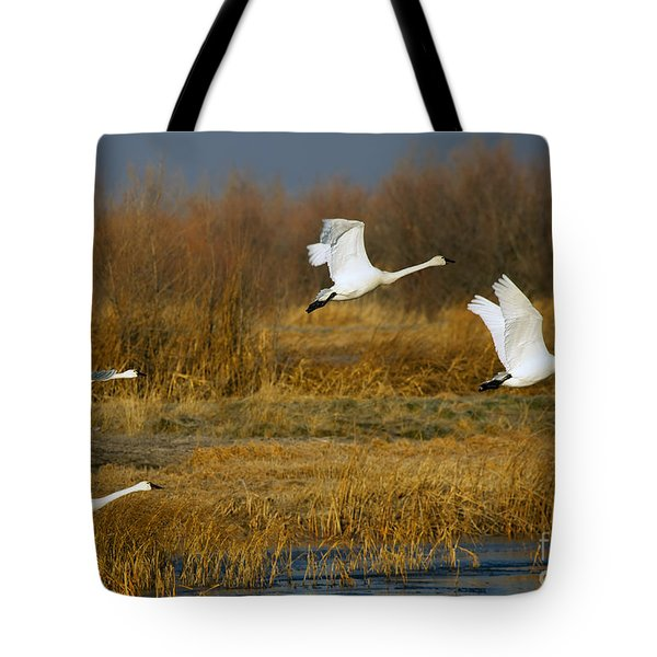 Tundra Flight Tote Bag