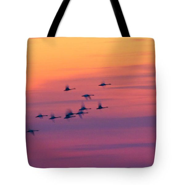Tundra Swans - Last Flight Of The Day Tote Bag