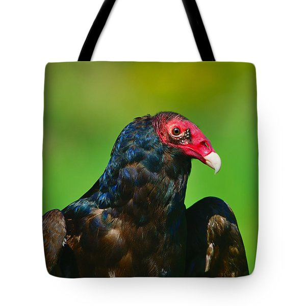 Turkey Vulture Tote Bag by Tony Beck