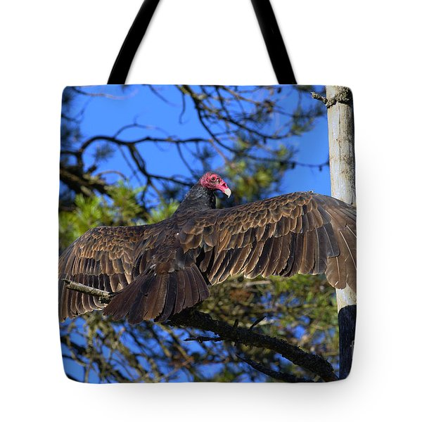 Turkey Vulture With Wings Spread Tote Bag by Sharon Talson