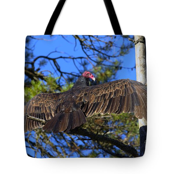 Turkey Vulture With Wings Spread Tote Bag